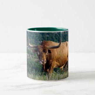 Texas Longhorn Two-Tone Coffee Mug