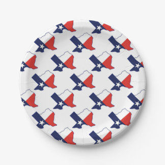 TEXAS MAP PAPER PLATE