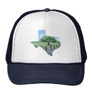 Texas Painting Cap