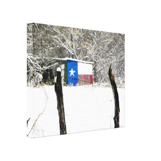 Texas Snow Gallery Wrapped Canvas