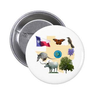 Texas State Symbols Pin