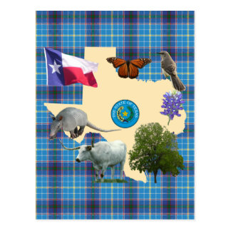 Texas State Symbols Post Card