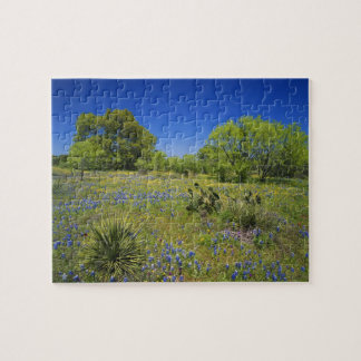 Texas, Texas Hill Country, Low bladderpod, Jigsaw Puzzle
