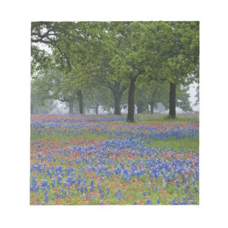 Texas, Texas Hill Country, Texas Paintbrush and Notepad