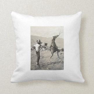 Texas Wild West Pillow