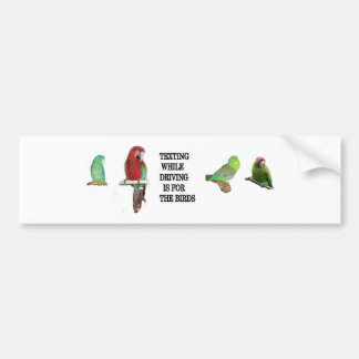 Texting While Driving Is For The Birds Sticker