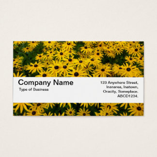 Texture Band V2 - Black-eyed Susans Business Card