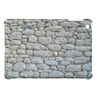 Texture of Stone Wall ed With Lichens iPad Mini Covers