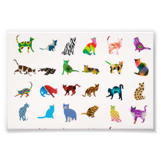 Texture With Colorful Cats Photo Print