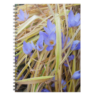 Textured Fall Crocuses in Straw Spiral Notebook. Spiral Notebook