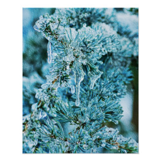 Textured Icy Pine Poster