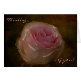 """Textured Pink Rose """"Thinking of You"""" Greeting Card"""
