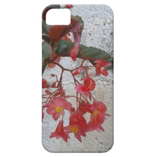 Textures iPhone 5 Covers