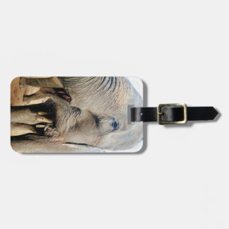 Thai Elephant Luggage Tag
