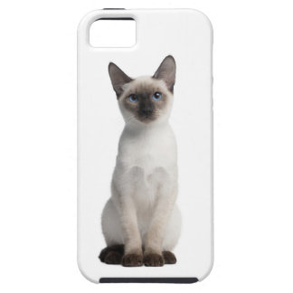 Thai kitten iPhone 5 cases