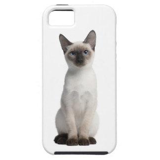 Thai kitten iPhone 5 cover