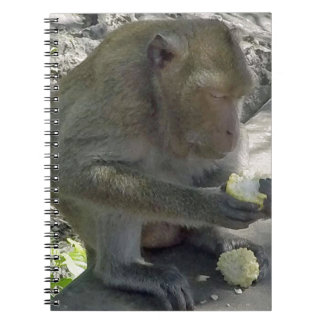 Thailand Monkey Notebook