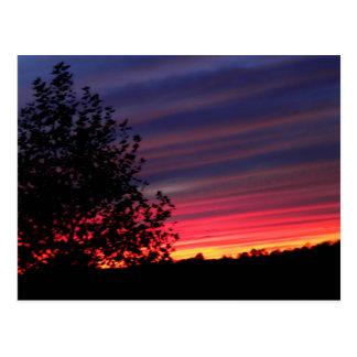 Thank a Soldier, Oct 2009 004 Postcard