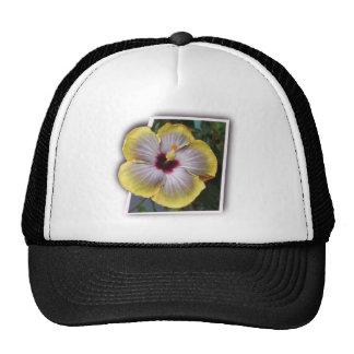 Thank you aloha mahalo designs cap