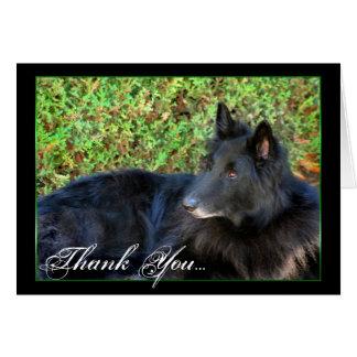 Thank You Belgian Shepherd greeting card