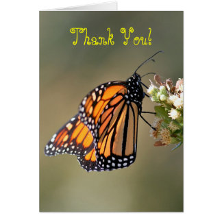 Thank You, Blank, Monarch Butterfly Card