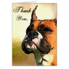 Thank You boxer dog greeting cars Card