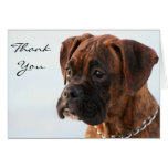 Thank You Brindle boxer puppy greeting card