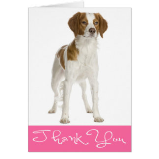 Thank You Brittany Spaniel Puppy Dog Note Card
