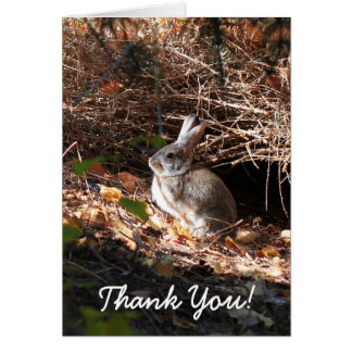 Thank You Bunny Rabbit Greeting Card