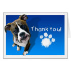 Thank You Card - Boxer