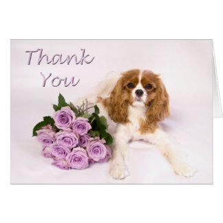 Thank You Cavalier King Charles Spaniel Roses Card