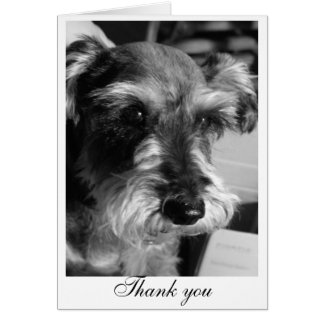 Thank you (Charmin) Card