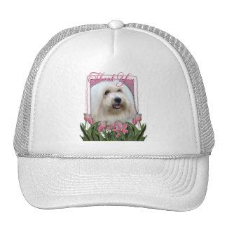 Thank You - Coton de Tulear Hat