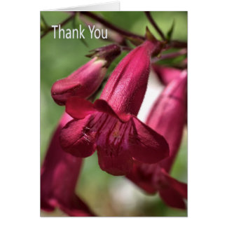 Thank You - Flowers Greeting Card