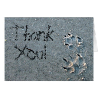Thank You For Pet Sitting Card