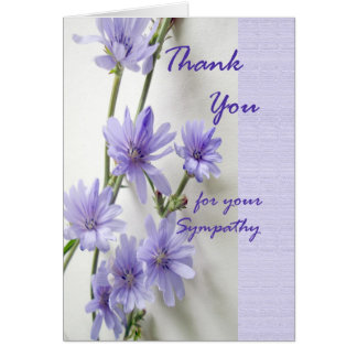 Thank You for Sympathy, Chicory Flowers Card