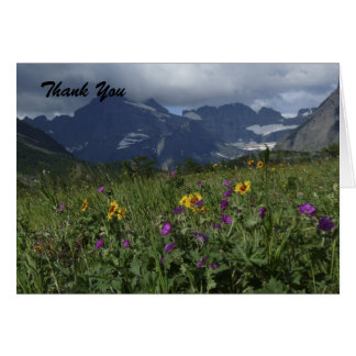 Thank You For Sympathy, Mountain Wildflowers Card