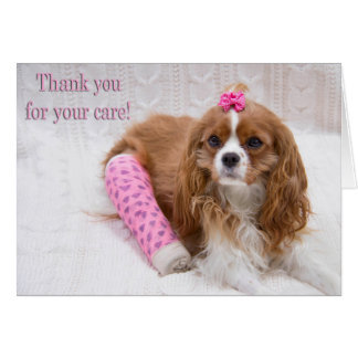 Thank You For Your Care King Charles Spaniel Card