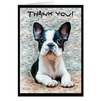 Thank You French Bulldog greeting card