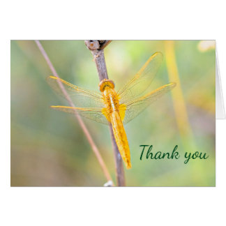 Thank you Gold and yellow colored dragonfly Card