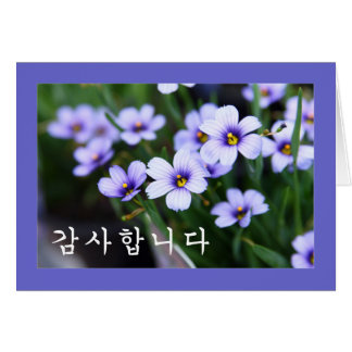 Thank you in Korean - Blue Eyed grass flower Card