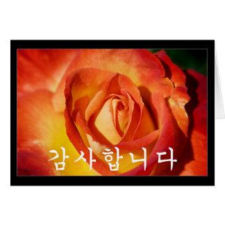 Thank you in Korean - orange rose Card