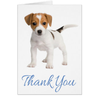 Thank You Jack Russell Terrier Puppy Dog Note Card