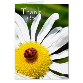 Thank you Ladybug Note Card
