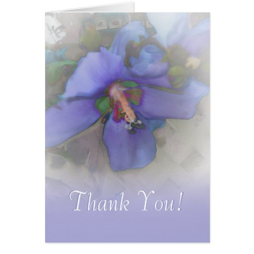 Thank You Lavender Blue Hibiscus Cards