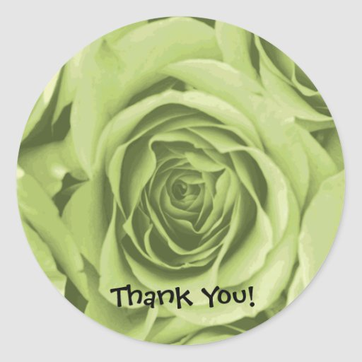 Thank You Lime Green Rose Sticker
