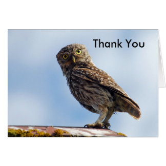 Thank You Little Owl Greeting Card