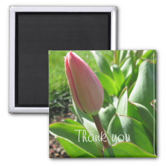 Thank you magnet- Tulip Square Magnet