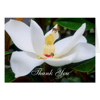 Thank You Magnolia and Honeybees Card