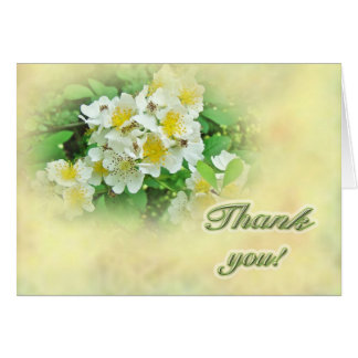 Thank You Multiflora Roses Card